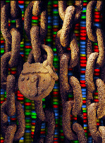 DNA Privacy