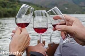 What is Port wine?