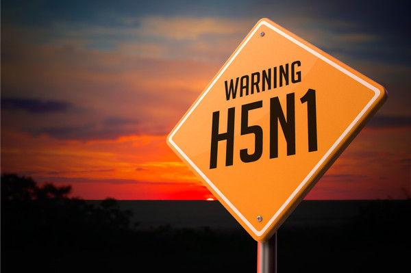 H5N1 on Warning Road Sign Fotolia_77999044_S