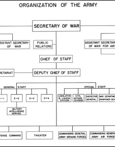 Hyperwar us army in wwii biennial reports of the chief staff united states to secretary war july june also rh ibiblio