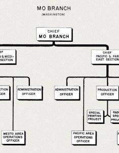 Org chart mo branch washington also hyperwar office of strategic servcices oss organization and functions rh ibiblio
