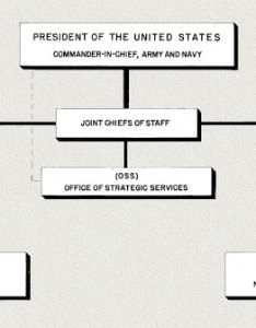 Chain of command also hyperwar office strategic servcices oss organization and functions rh ibiblio