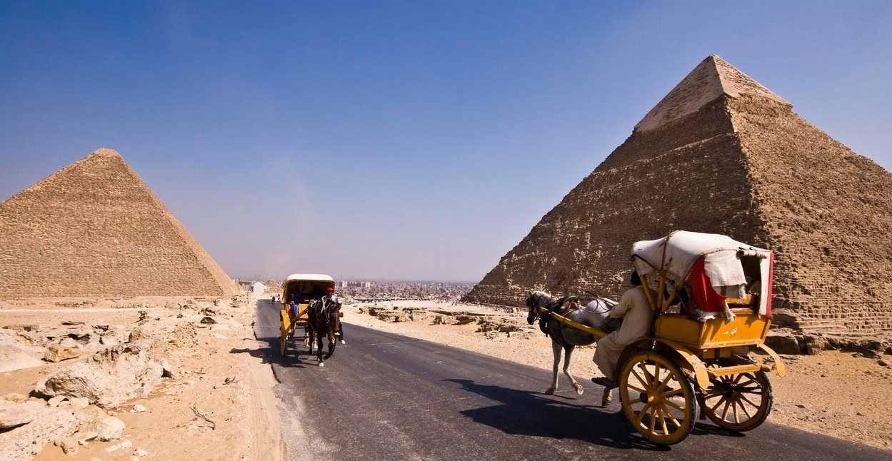 Horse Carriage at Pyramids
