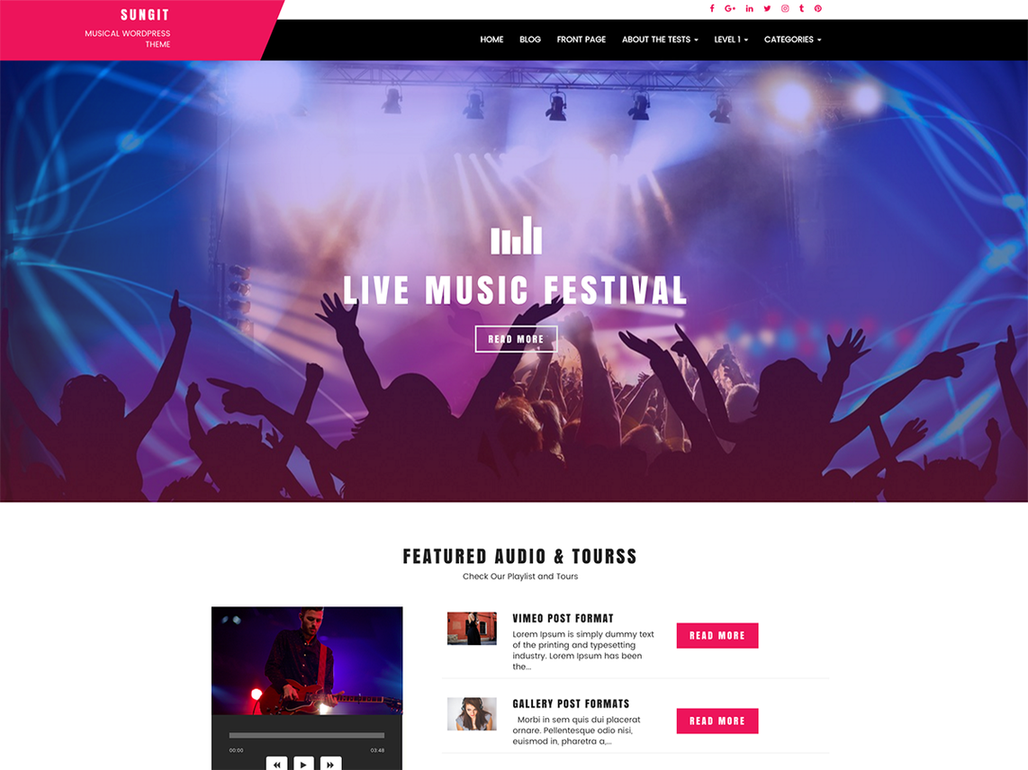 Sungit Lite - WordPress Theme For Musicians 1