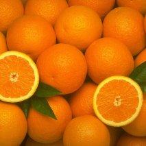 naranjazumo2 213x213 - Naranjas y limones de Ibiza - Ibizagrove inicio