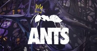 ANTS - Join The Colony at Ushuaia Ibiza
