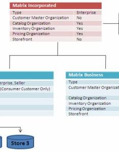also organization structure of matrix incorporated rh ibm