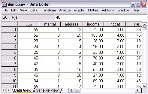 الهيكل الأساسي لملفات بيانات SPSS