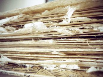 Banana Tree Paper