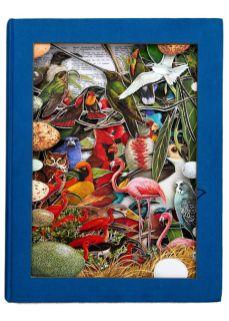 2015.11.19 - Alexander Korzer-Robinson Book Sculpture - 491932_die-voegel-der-welt-1963