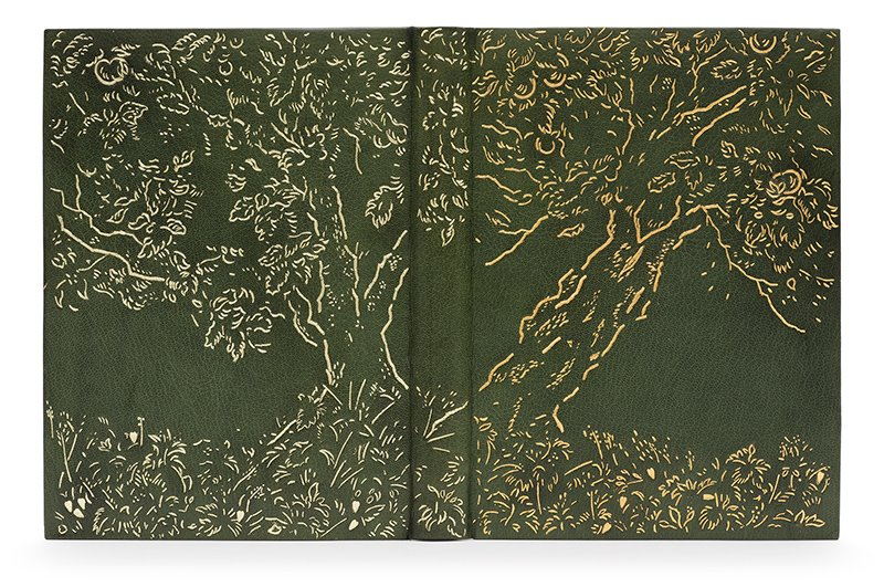 The Clothworkers' Prize for Open Choice Book (2nd) — Pamela Richmond. Under the Greenwood Tree by Thomas Hardy. Photo by Designer Bookbinders