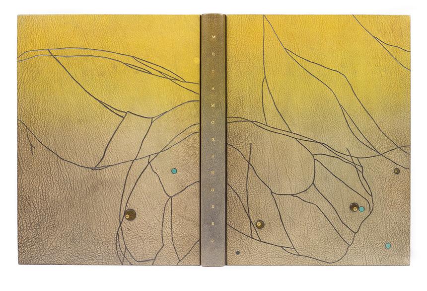 2017.08.18 - Designer Bookbinders International Competition 2017 - Distingiushed Winners - Gavin Dovey - Metamorphoses