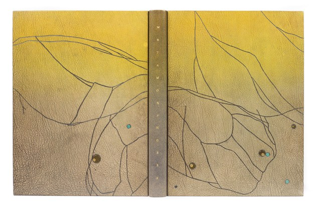 2017.08.18 - Designer Bookbinders International Competition 2017 - Distingiushed Winners - Gavin Dovey - Metamorphoses