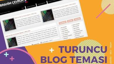 Photo of Turuncu Blog Teması