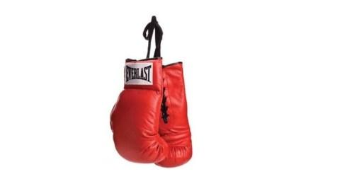 Warrior boxing matchmaking database