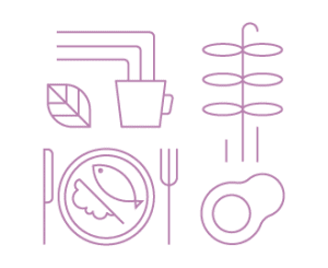 diagram representing diet