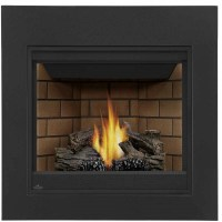 Napoleon Ascent 35 Direct Vent Gas Fireplace