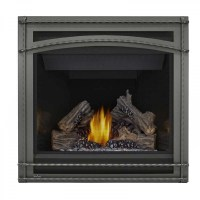Best Direct Vent Gas Fireplaces majestic cameo 500mdv 42 ...