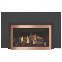 Napoleon GDIZC-N Basic Natural gas fireplace insert w ...