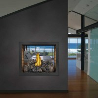 Napoleon HD81NT Top vent see thru gas fireplace body ...