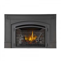 Napoleon Fireplace Insert Reviews. Napoleon EPI3 Wood ...