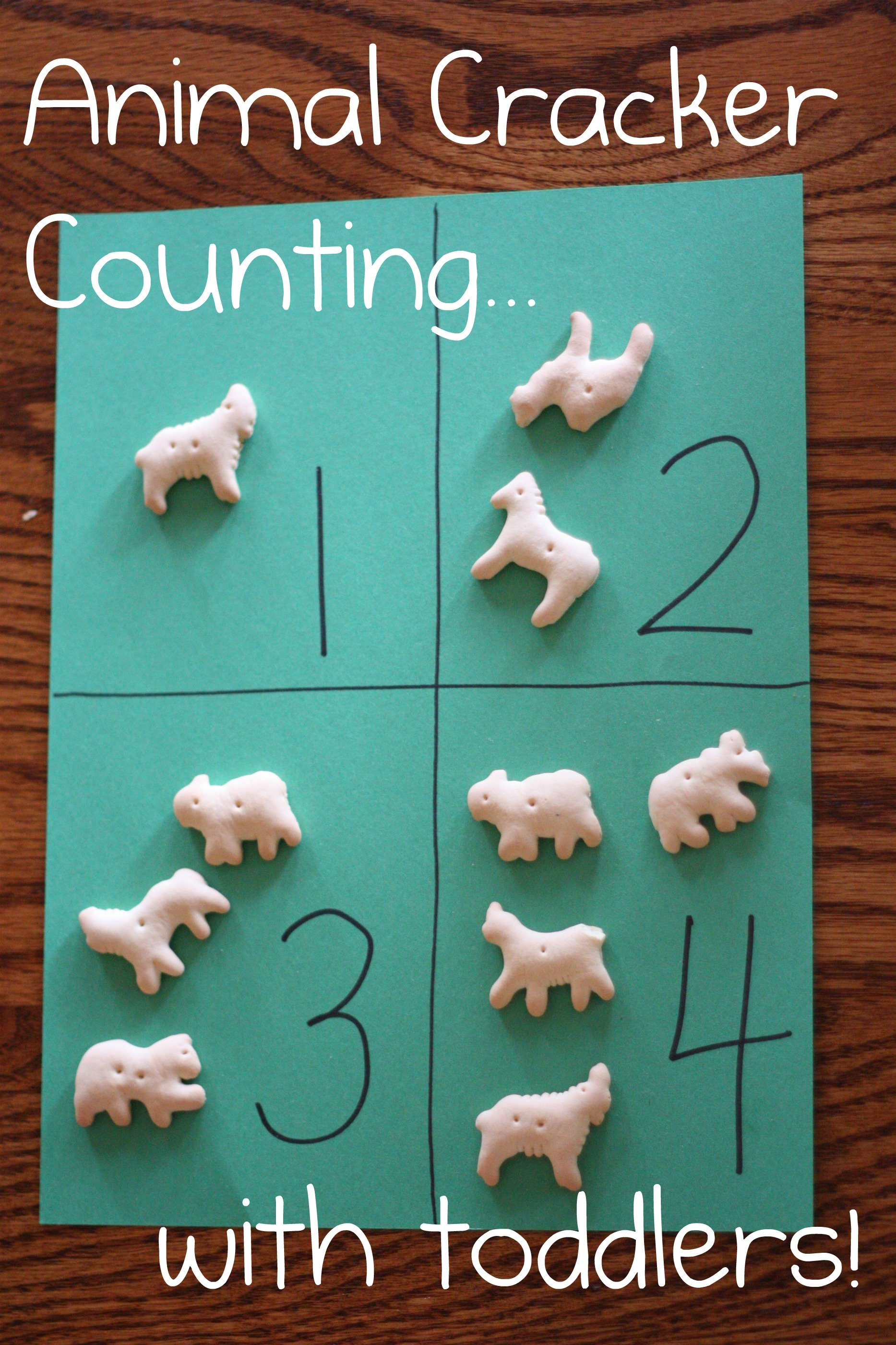 Animal Cracker Counting And One To One Correspondence Practice