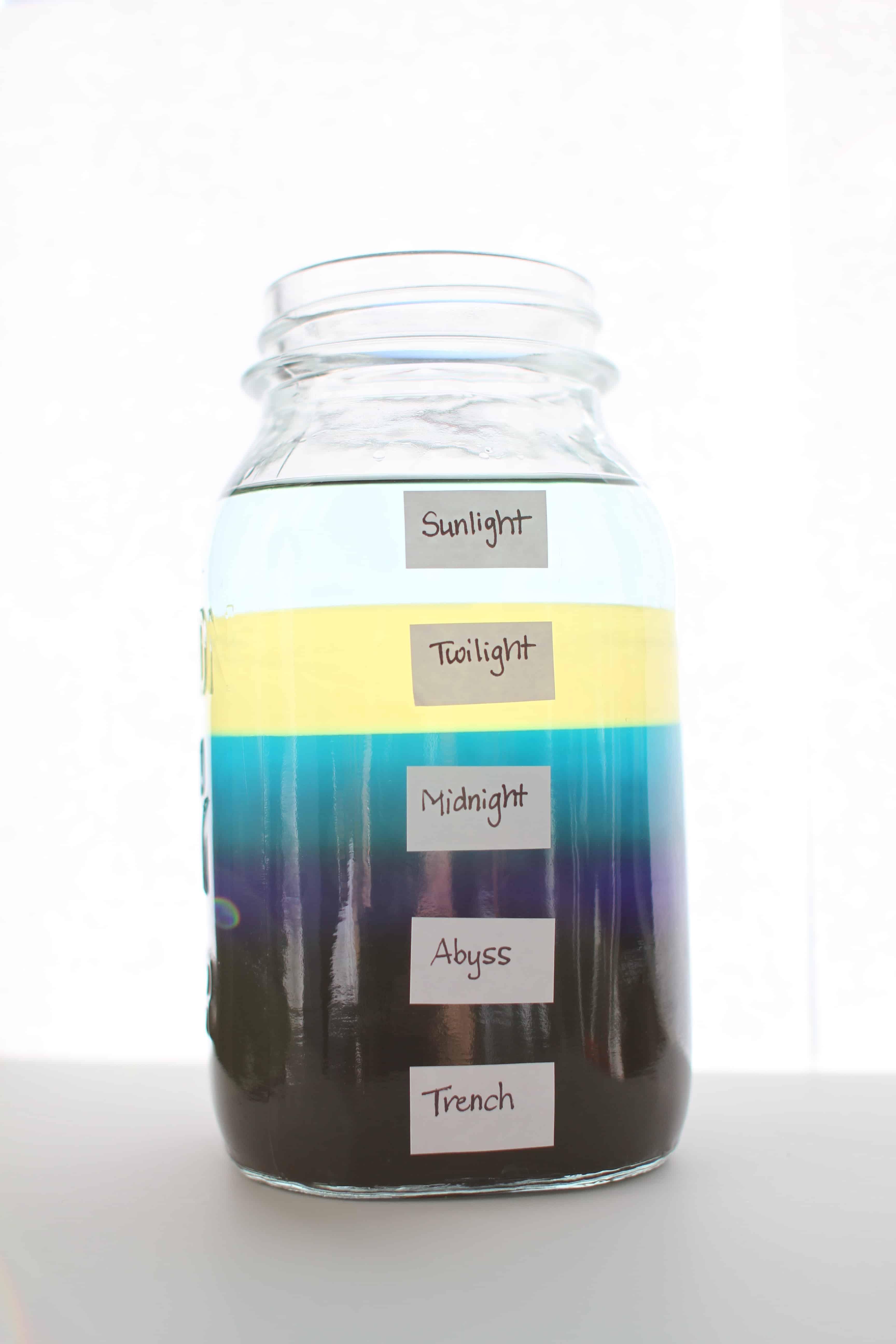 Make Your Own Ocean Zones In A Jar
