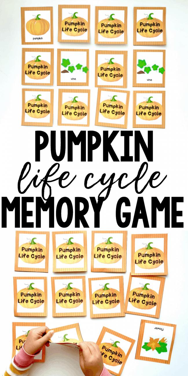 hight resolution of pumpkin life cycle printable memory game