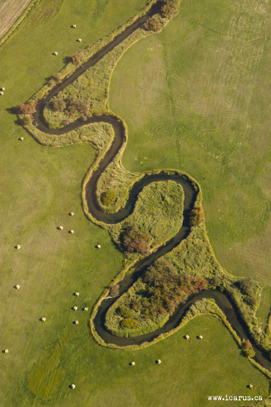 Meandering Brook