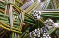 How to make a St Brigid's Cross