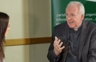 Current Safeguarding Practice in the Irish Church