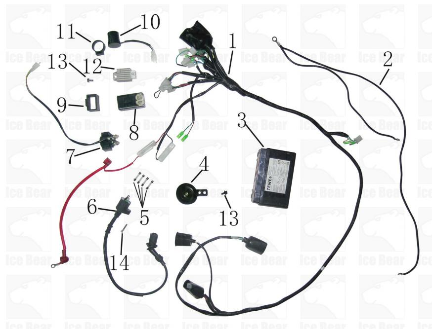 Ice Bear Pmz50 Scooter Wiring Diagram Ice Bear Scooter