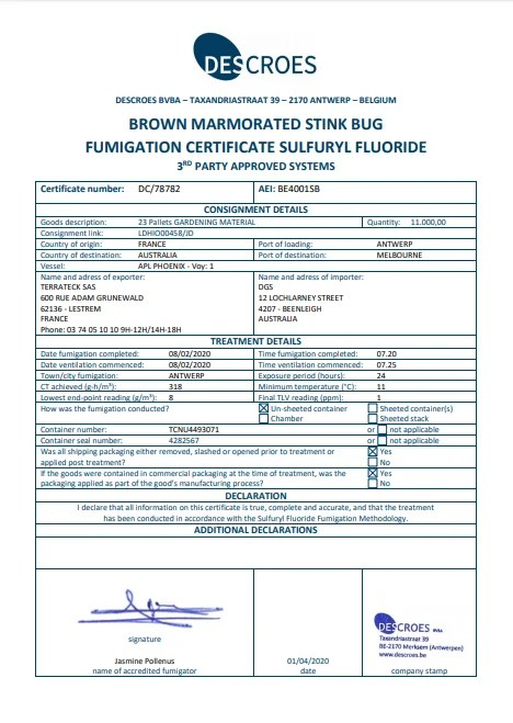 brown marmorated stink bug fumigation certificate sample