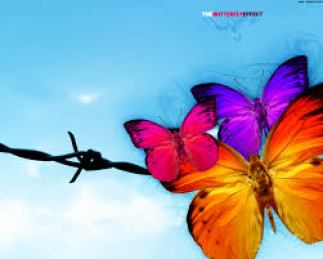 Ethics of Butterfly Effect