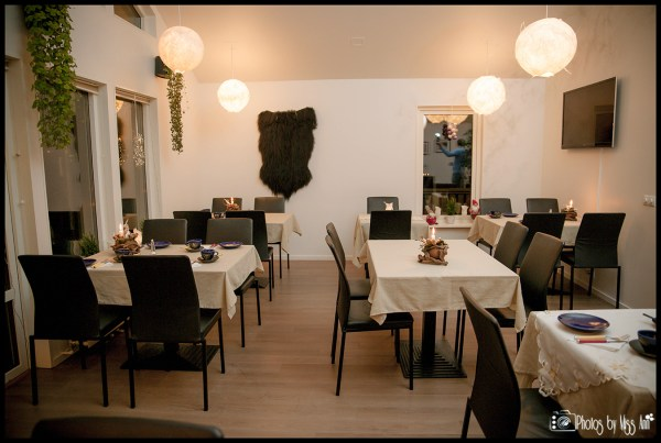 varma-restaurant-iceland-wedding-reception-location-frost-and-fire