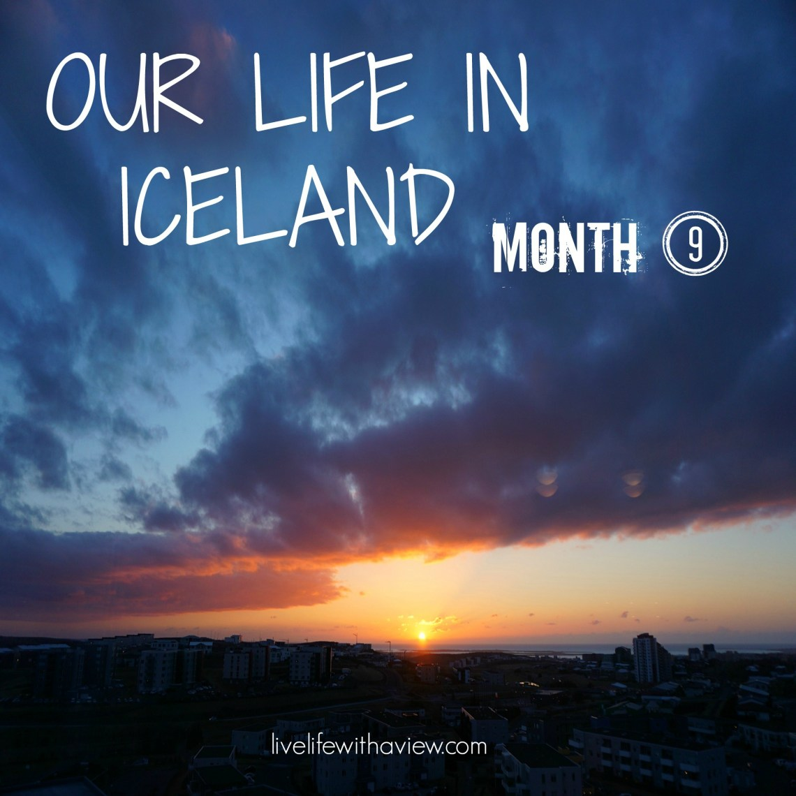 Our Life in Iceland - Month 9