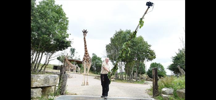 Chessington Giraffe Go Wild For Neck-Stra Long Selfie Stick