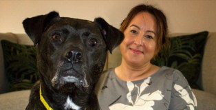 It's a 'yappy' ever after for long-term lodger at Dogs Trust Snetterton