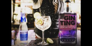 The GinTing Premium Dry Gin