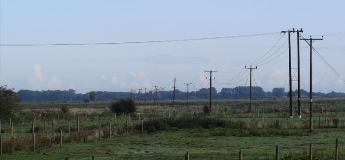 Power lines to be removed to at South Walsham Marshes