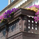 5 Tips for a Beautiful Balcony Garden