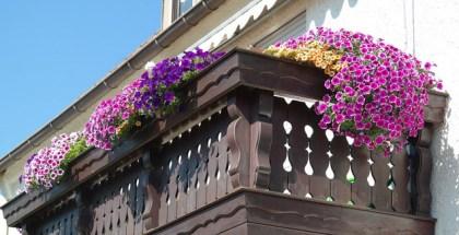 5 Tips for a Beautiful Balcony Garden