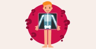 body quiz
