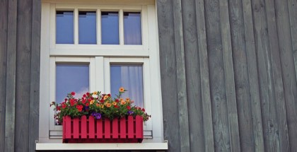 How to take care of wood windows
