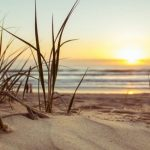 When it comes to a sight for sore eyes the beach is unbeatable, researchers have found