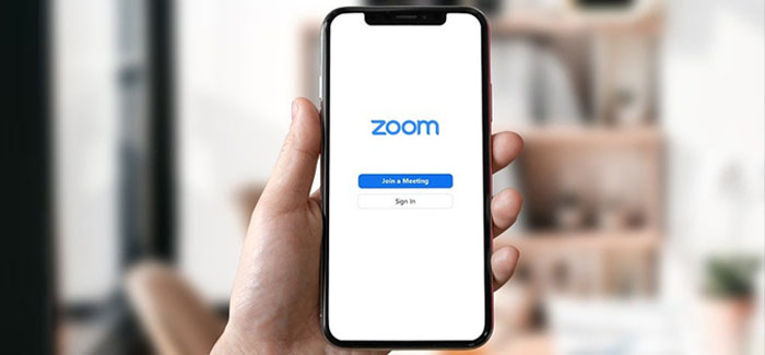 Workplace Abuse on Zoom