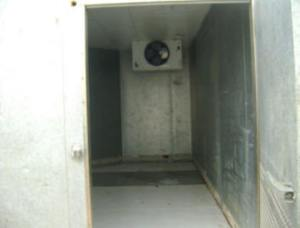 freezer-3