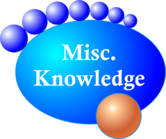 MISC Knowledge