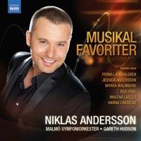 Niklas Anderson - new album