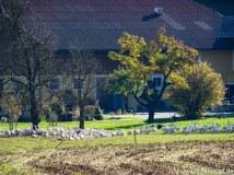 Herbstouren_Tag2- (10 von 17)